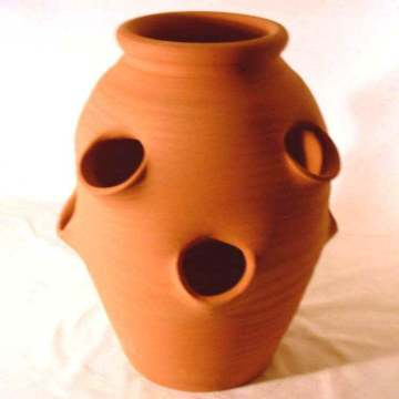 this type of pot also works great for herbs succulents and annual flowers