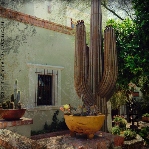 southwest cactus sculpture