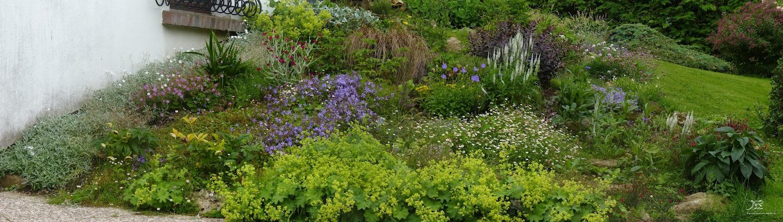Le Jardin De Triton Rocaille Ou Comment Rendre Un