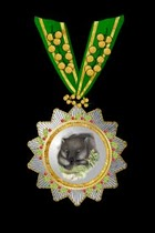 The Hoche-Affeburg Order of the Wombat with Acacia Clasp