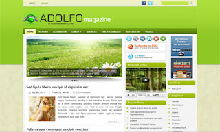 Adolfo WordPress Theme