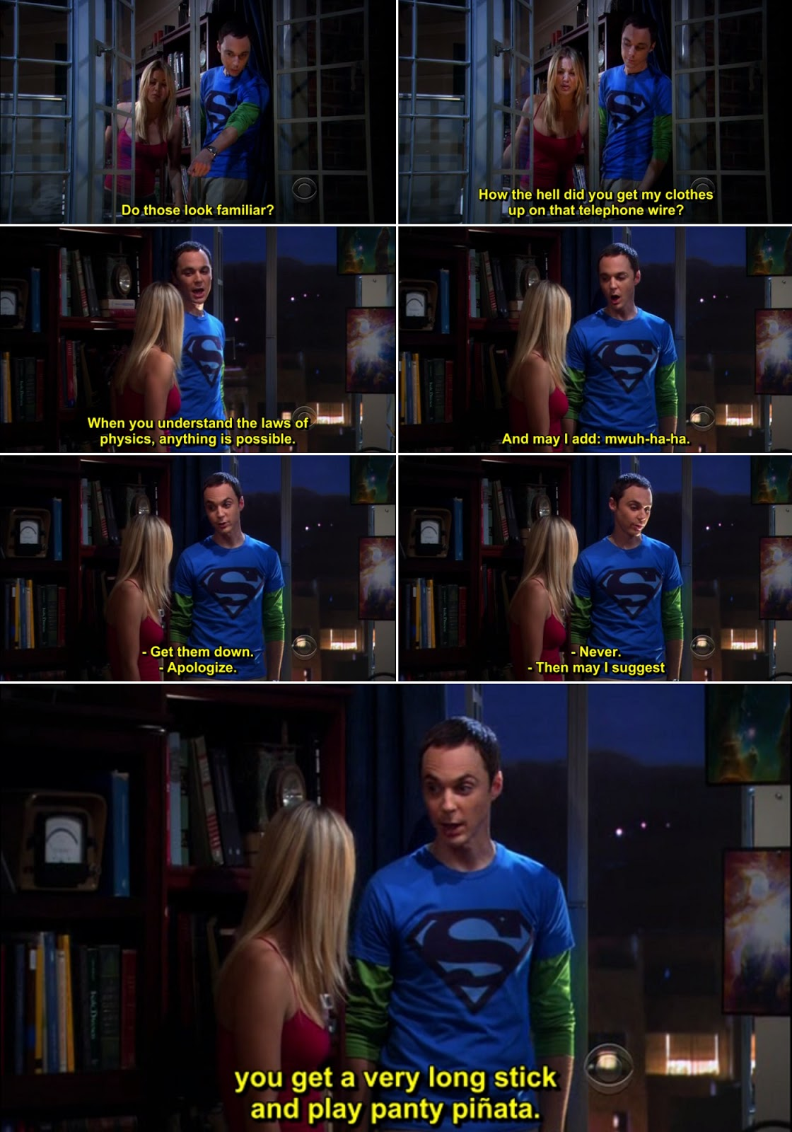The Big Bang Theory Quote-20