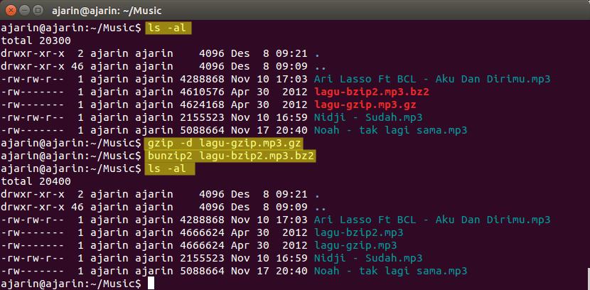 Manajemen File dan Direktori Linux - dekompresi