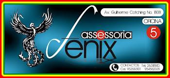ASESORIA FENIX