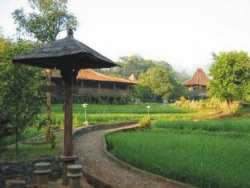 Hotel Bagus Murah di Salatiga - Hills Joglo Villa