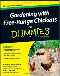Gardening with Free range chickens