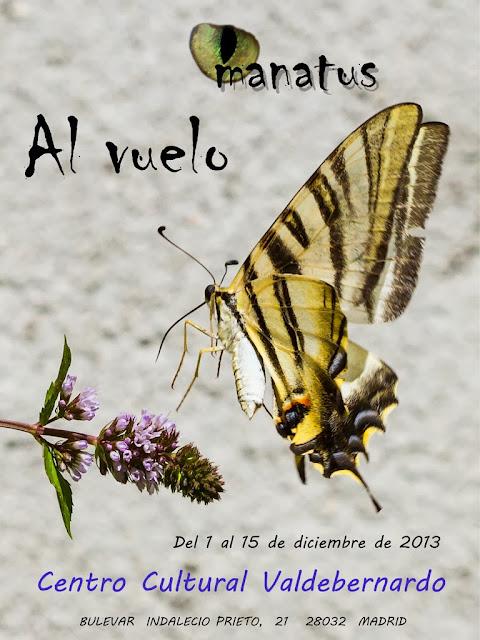 Expo primera quincena de diciembre - CC Valdebernardo