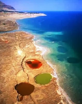 صور من الطائرة للظاهرة على الشاطئ و داخل المياه