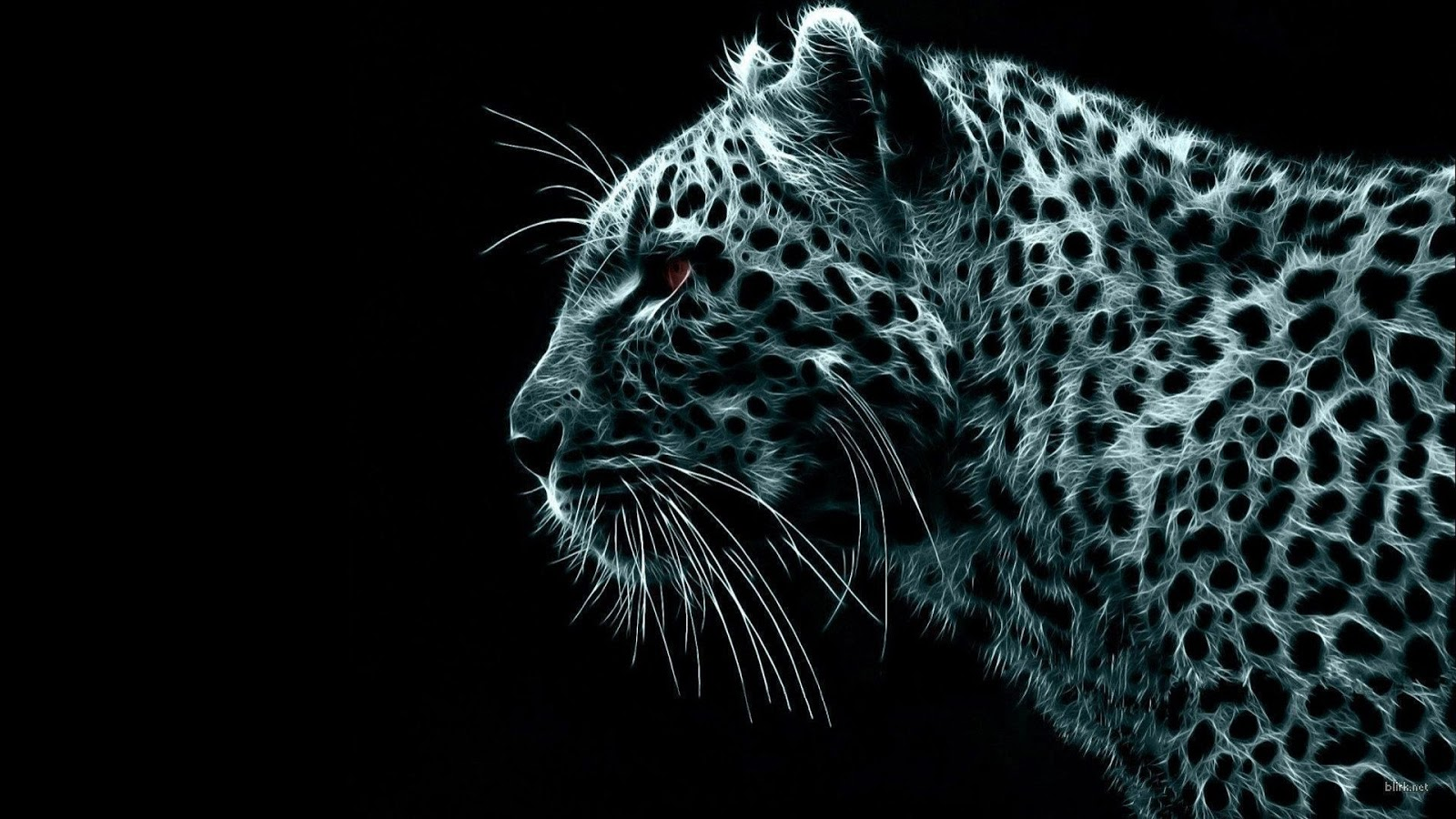 Snow Leopard HD Wallpapers full 1080p