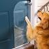 Για να προστατεύσετε την πόρτα...