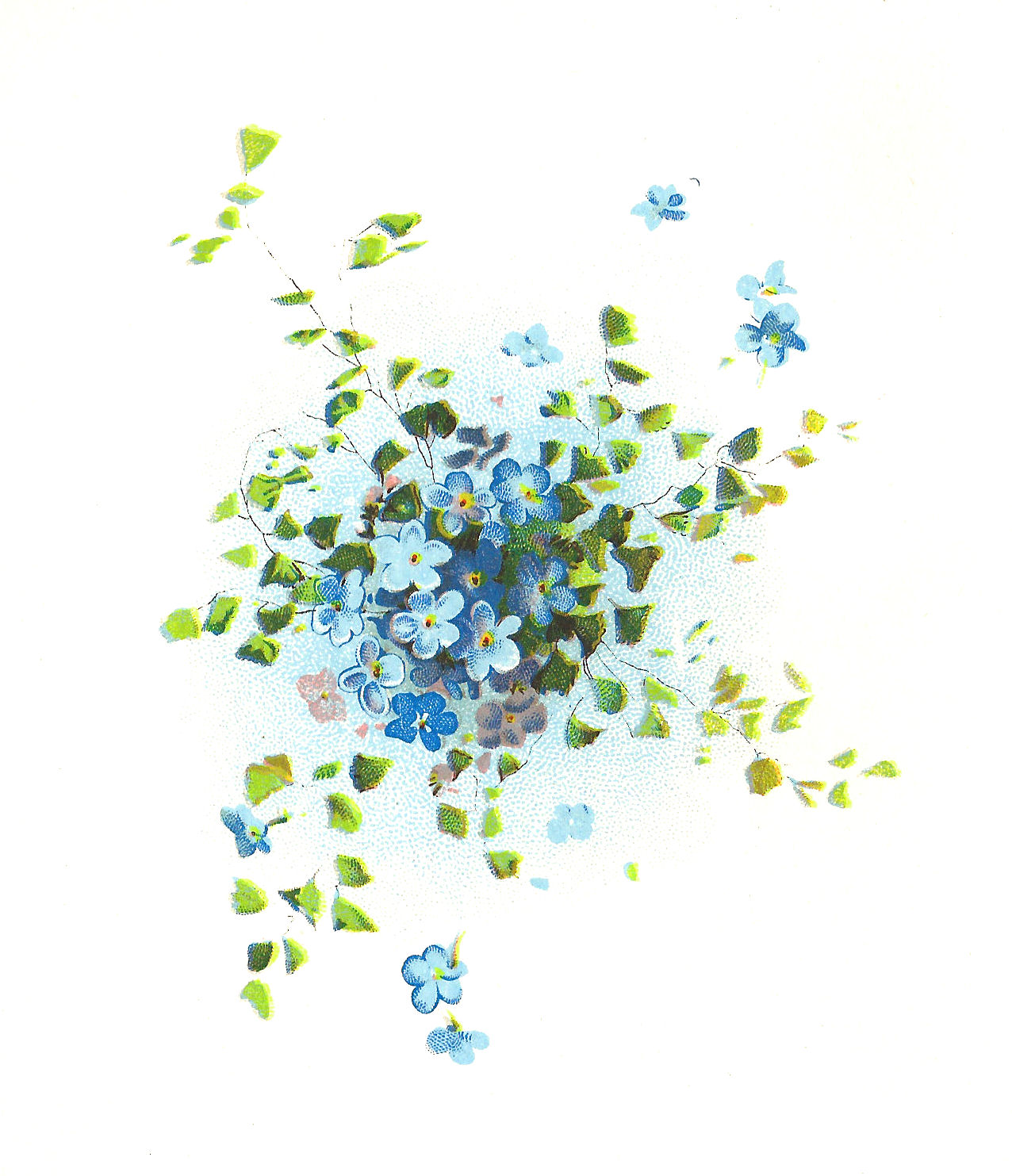 ... Flower Graphic: Forget-Me-Not Flowers Clip Art Cluster with Leaves