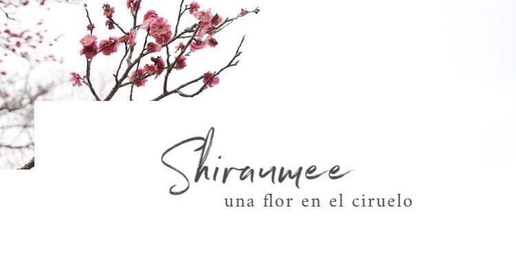 Shiraumee
