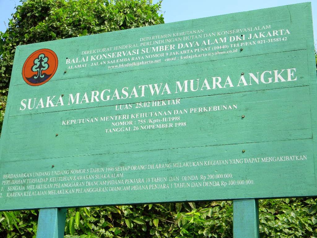 Suaka Margasatwa Muara Angke, Hutan Mangrove di Utara Jakarta