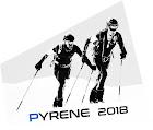 Pyrene 2018