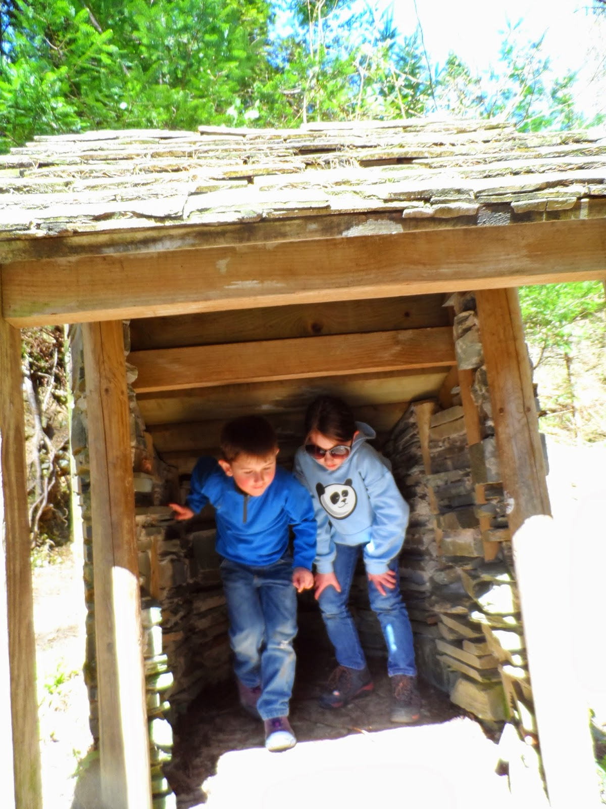 Grizedale Forest Gruffalo trail, nope not in here.