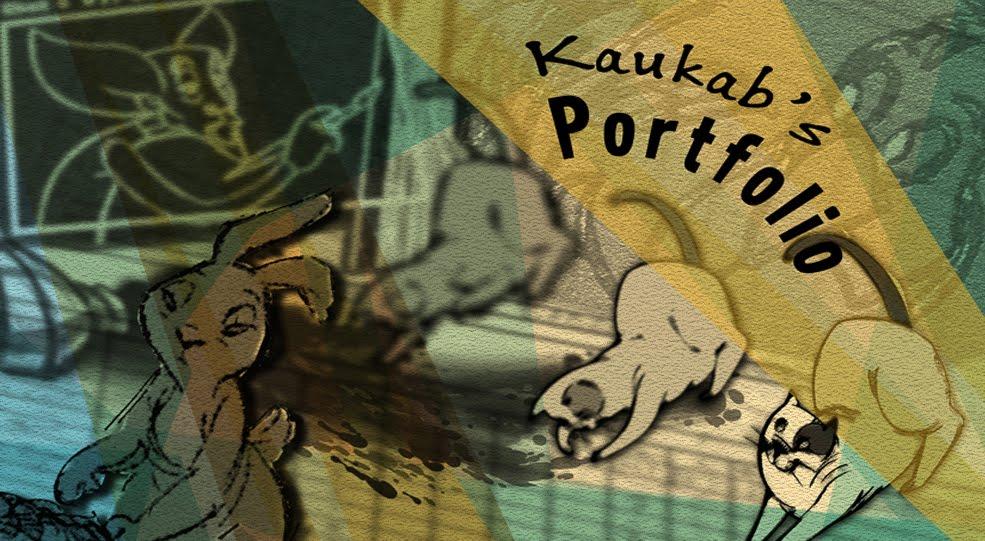 Kaukab's Portfolio