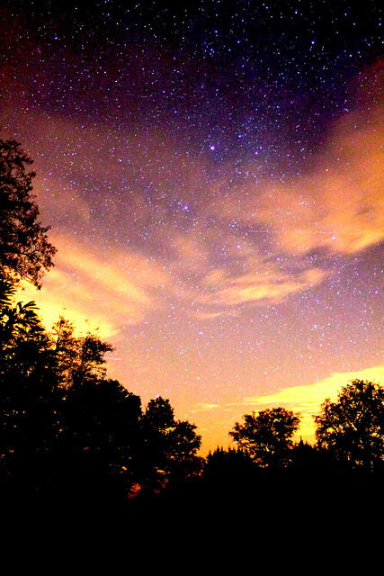 Autumn Night Sky Autumn Posters Picture