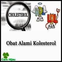 Obat Alami Kolesterol Alami