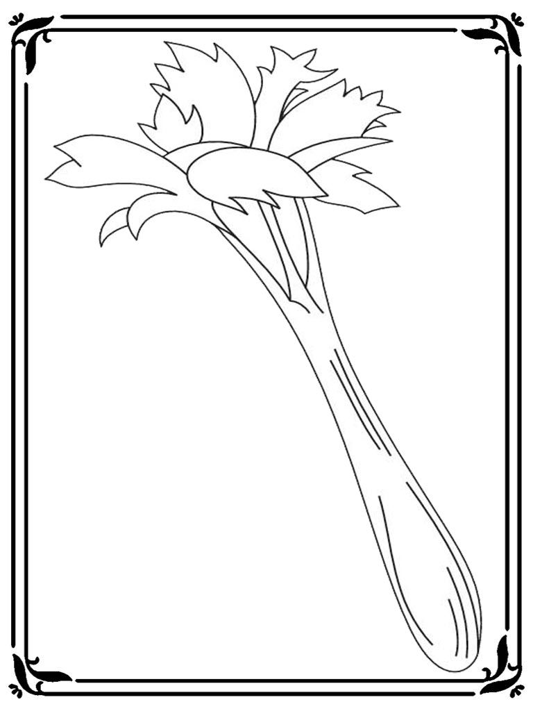 Adult Top Celery Coloring Page Images beauty celery coloring pictures realistic pages images