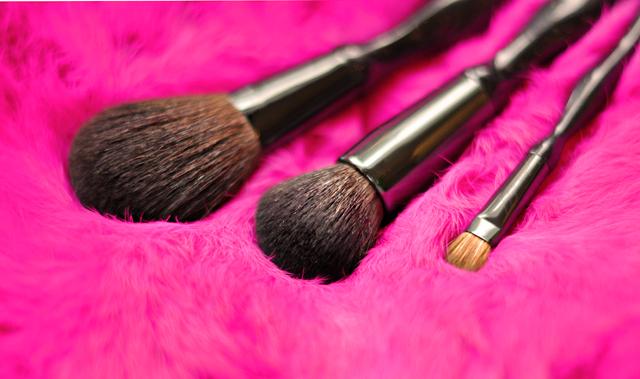 Sonia Kashuk Makeup, brushes