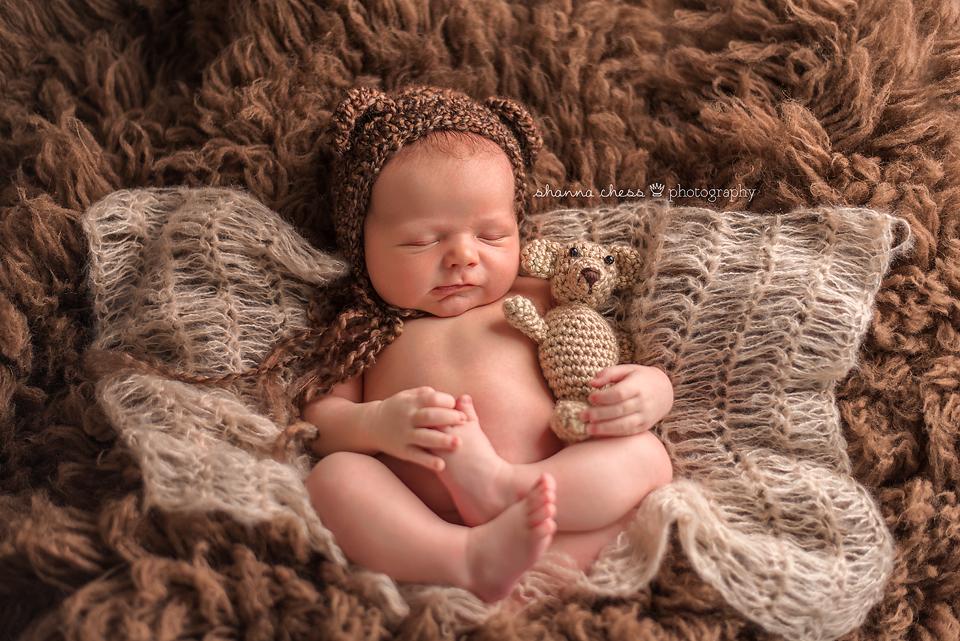 eugene springfield oregon newborn photography teddy bear