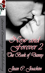 Now and Forever 2, the Book of Danny
