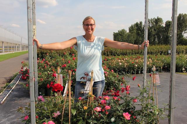 1000 gute Gruende Rosen