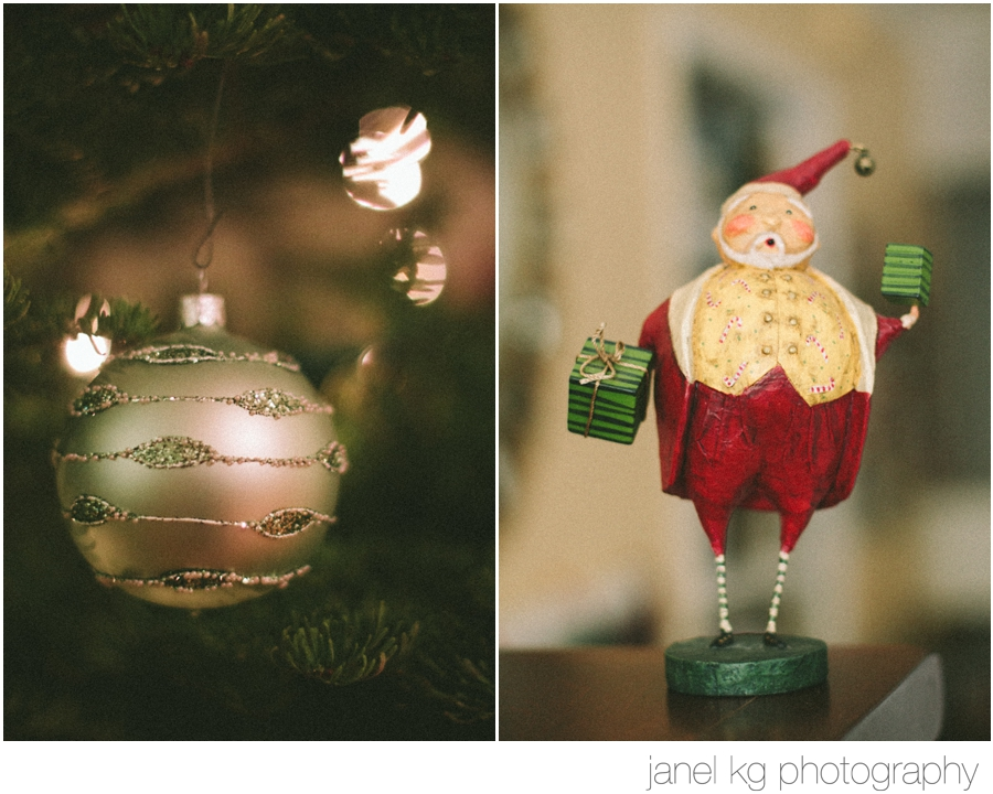 diy glitter ornament - Janel KG Photography