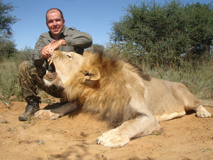 my top collection african lion hunting
