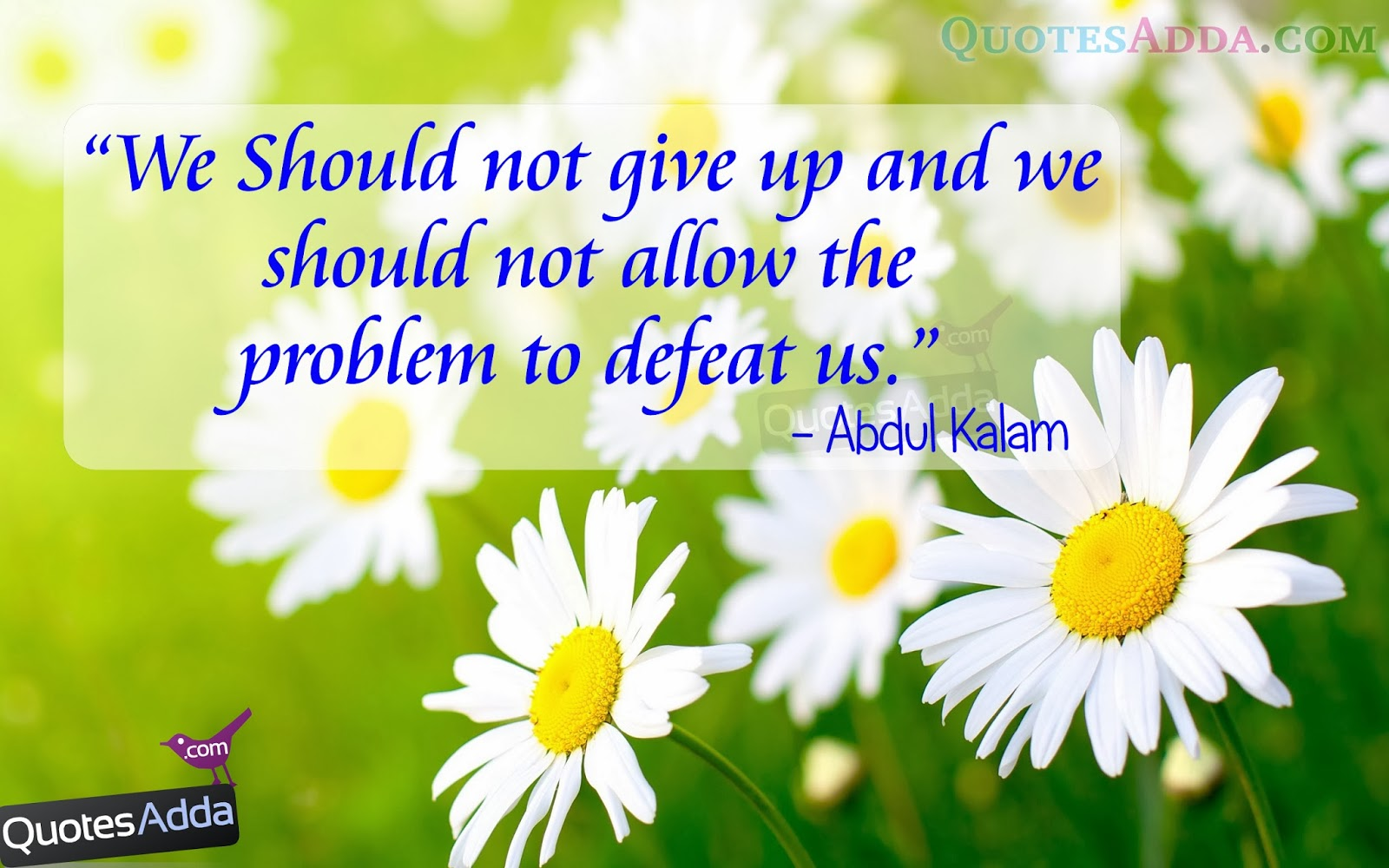 abdul kalam motivational and inspirational quotes 8