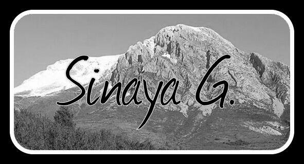 EL BLOG DE SINAYA