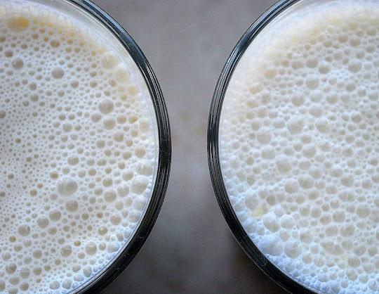 Koktajl z miąższu mango na bazie jogurtu