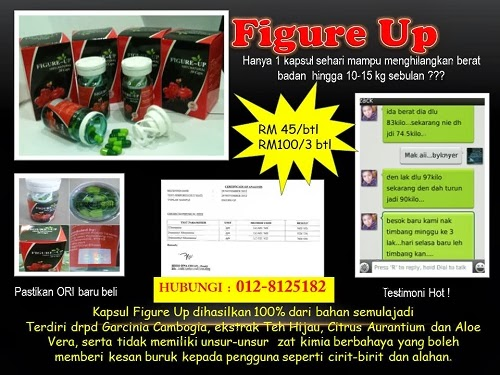 Figure Up (RM45/pcs @ RM100/3pcs)