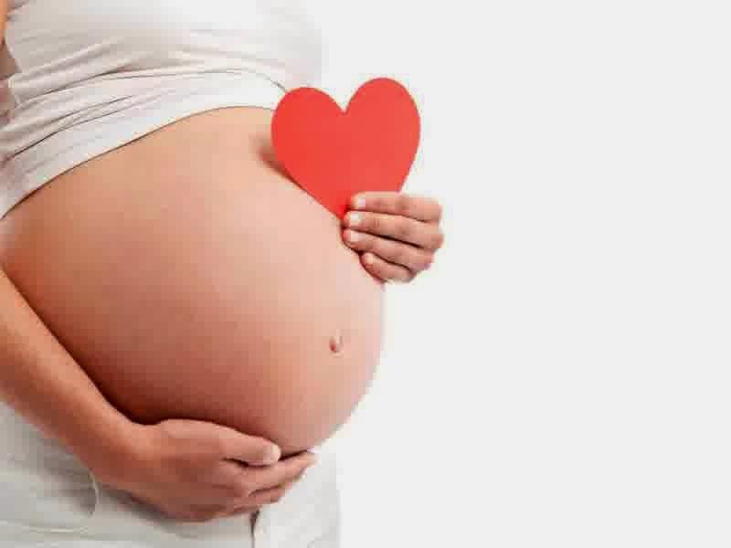 pengertian kehamilan