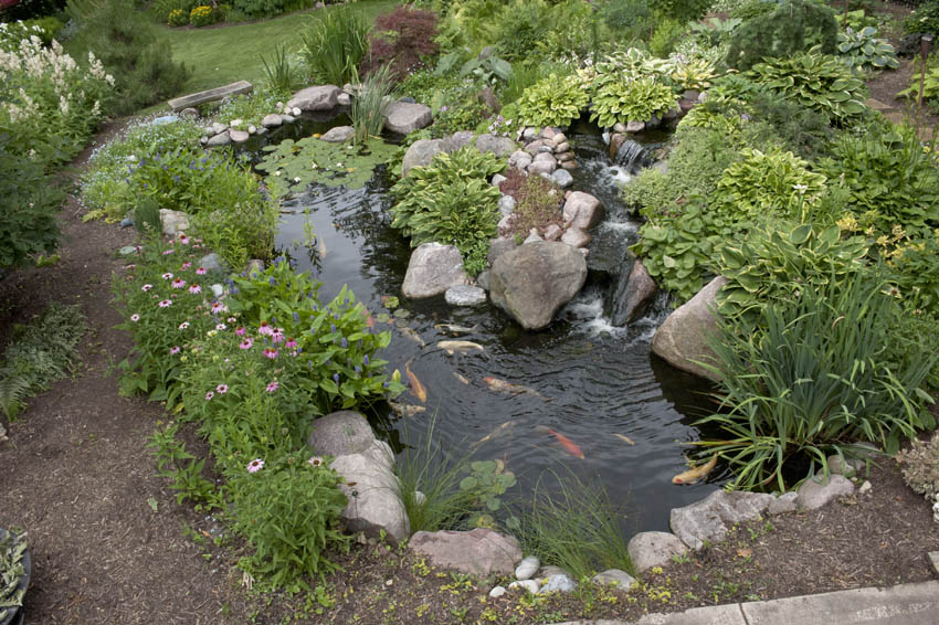 Aquascape Your Landscape Designing Your Dream Pond
