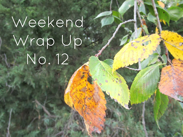 Weekend Wrap Up No. 12 courtneylthings.blogspot.com