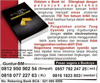 JUAL EBOOK TIPS DAN TRIK CARA MENGOLAH BATUAN EMAS PERAK DAN JUAL KIMIA DETEKSI PERAK PADA BATUAN