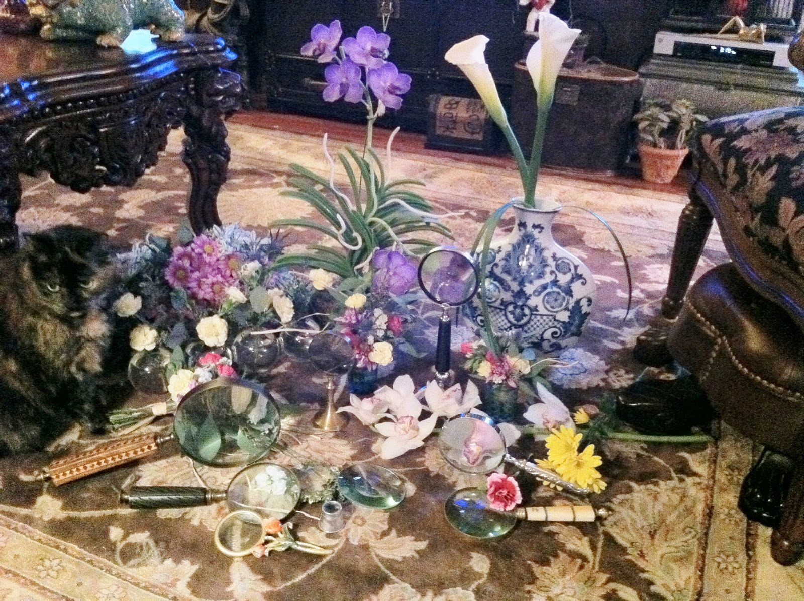 The enchanted petal for the love of cats penelope cat flowers and magnifying glasses stein your florist co izmirmasajfo