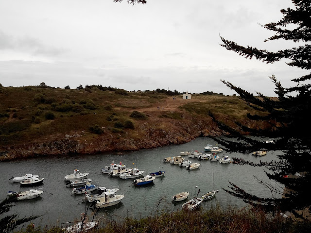 port de la meule, port, île d'yeu, vendée, bullelodie