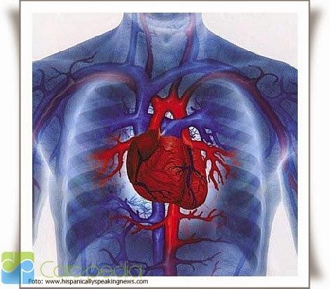 Penyakit Jantung Kardiovaskular yang Berbahaya