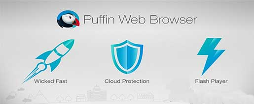 Puffin Browser Pro v4.6.1.2083 Full Apk