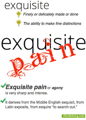 http://www.vocabulary.com/dictionary/exquisite