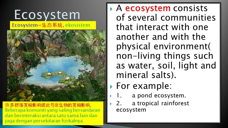 Population definition, Community definition, Ecosystem de...