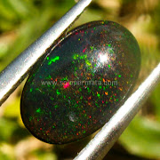Batu permata Black Opal Kalimaya - SP834