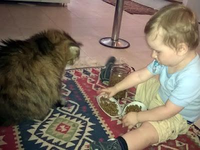 Bir Annenin Blogu - Deniz, Püskül kedisine mama verirken