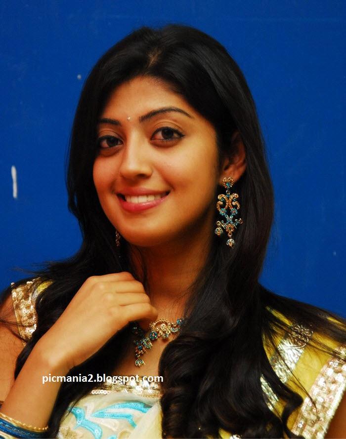 praneetha half saree_sexy expose