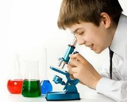 Eksperimen / Percobaan Sains