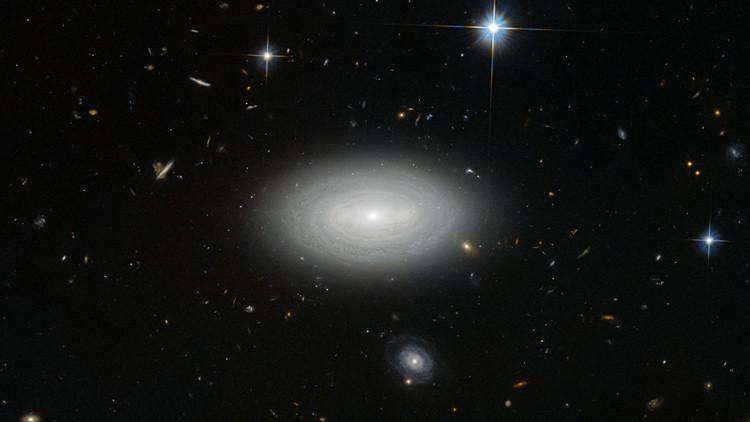 Galaxia solitaria
