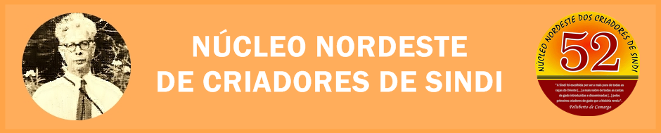 NUCLEO NORDESTE DE CRIADORES DE SINDI