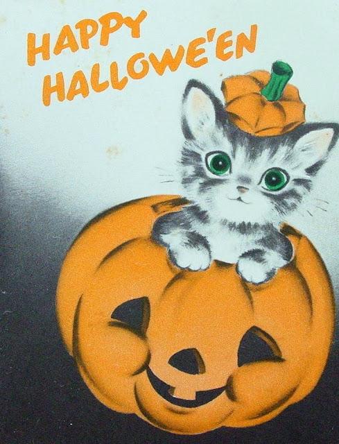 Katze Halloween